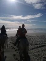 horses-beach-rides